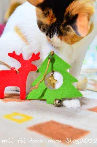 20120630ち2回目クリスマス.jpg