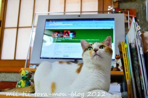 20120630ちpasoきゅる.jpg