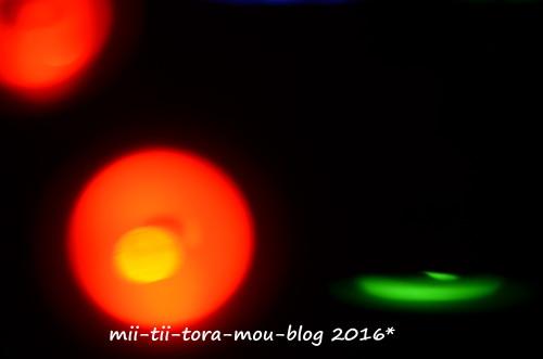 20160825f.jpg