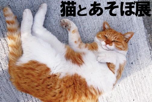 猫とあそぼ展.jpg