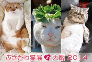 busakawa_osaka_web_300.jpg